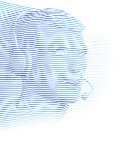 Spitch_Virtual Team_Luka